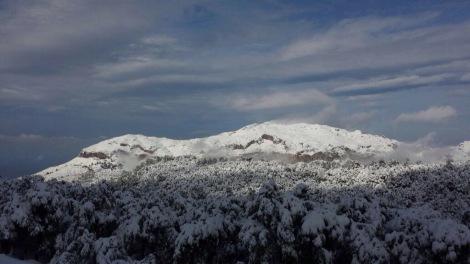 Vakkert fra avstånd men kaldt på nærthold