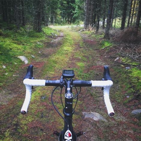 De vanlige treningsturene har blitt byttet ut med CX og MTB turer i skog og mark.